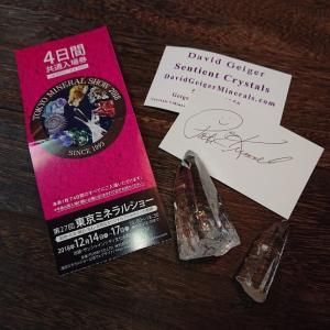 東京ミネラルショーに行ってきました☆彡 センティエント・プラズマ・クリスタルについて語ってますw
