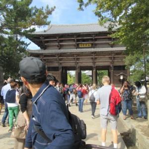 奈良公園へサイクリング  ☆  晩御飯  お刺身 白菜とシーチキンの炊いたん