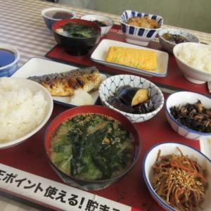 犬の生涯って、  ☆  夕ぶらでの買い物  ☆  お昼は、おおきに食堂  ☆  いなり寿司