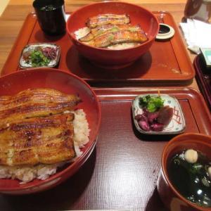 待たされた一日  ☆  竹葉亭で鰻丼を  ☆  夜は簡単おでん風で