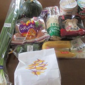 昨日の外出は、、、  ★  買い物  ★  鮭の麹漬け