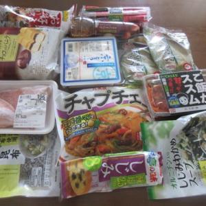 ざっくりですが、10万円で、  ★  買物 ★ 晩御飯 冷凍餃子