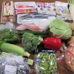 シジミ汁で思い出した30年前?のバス旅行  ☆  昨日のお買い物  ☆  塩秋刀魚 お久しぶりのシジミ汁