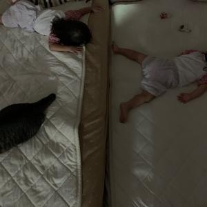 ひどすぎる双子の寝相
