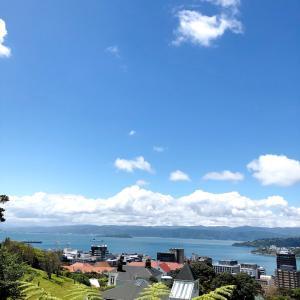NZウェリントンの街歩き④