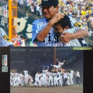 2003阪神優勝試合はカープのサヨナラ負け。