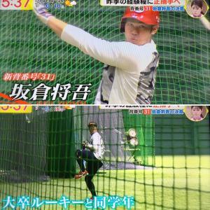 坂倉、5年目のシーズンへ。沖縄キャンプも無観客開催決定。