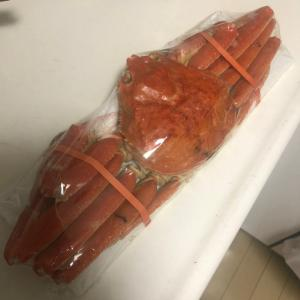 北海道より魚介類
