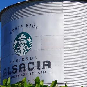 スターバックス自社農園Hacienda Alsacia