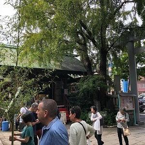 地元の方からも大人気!築地で美味しい、和食屋さんです!