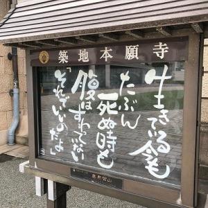 築地の美味しい「✨あんこう鍋」を食べられます!【9月26日版】