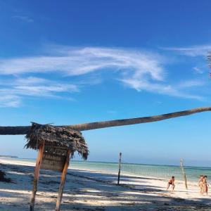2020    1.6      ザンジバル島⑦   旅は誰と過ごすかも大事なんだと実感。