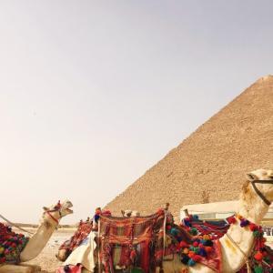 2020     2.6  エジプト④ ギザのピラミッドへ!