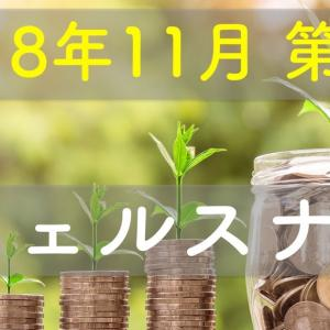【2018/11 第4週】ウェルスナビの成果 前週比+4,017円
