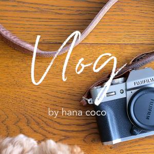【動画】新しいカメラでVlogをはじめました