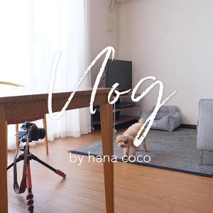 【Vlog動画】わんことのんびりVlog(YouTube)