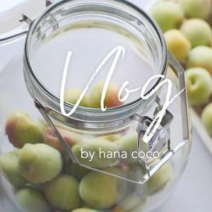 てんさい糖とりんご酢、梅シロップづくり|vlog