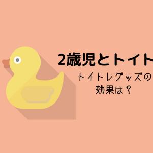 2歳児トイトレ記録【トイトレおもちゃは必要?】