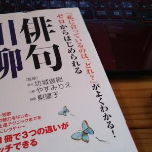 ストレスや不満を笑い飛ばす十七音!川柳の入り口と出会う書籍まとめ~カリメロ帖ほんのいりぐち~