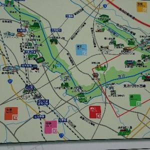 さいたま市の見沼田んぼの桜回廊に行って来ました🌸