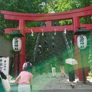 愛宕神社の出世の石段を登りました。