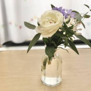 お花の定期便「Bloomee LIFE」を試して3ヶ月目の感想
