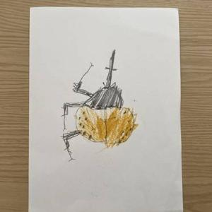 【誕生日】息子5歳になりました。プレゼントは昆虫関連。