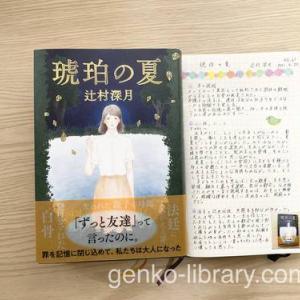 【読書感想】辻村深月さん著書「琥珀の夏」少女時代の心の機微が繊細に描かれていました。
