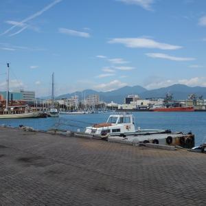 駿河湾フェリーで船酔いし、東海バスと伊豆急線で快適に乗り旅しました。