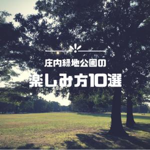 庄内緑地公園の楽しみ方10選!【愛知のレジャースポット】