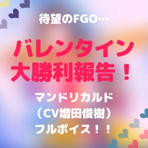 バレンタイン大勝利報告!FGOマンドリカルド(CV 増田俊樹)待望のフルボイス!