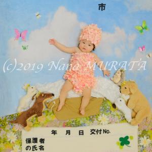 続・我が子が表紙の母子手帳&おくすり手帳♡♡♡