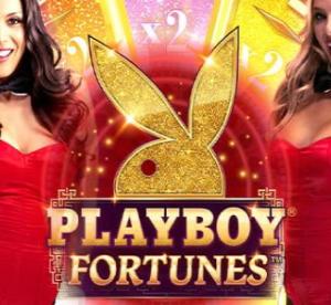 【Playboy Fortunes】無限ループで倍率UPの配当を獲得🐰一撃2,000倍の爆裂機種$