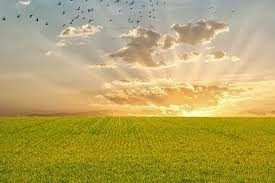 【自己啓発】経験を積む・重ねることで自由に生きることができる