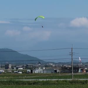 近江八幡市でモーターパラグライダー体験_空からの琵琶湖と安土城跡