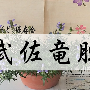 武佐のリンドウ『ムシャリンドウ』漢字で書くとカッコイイ!