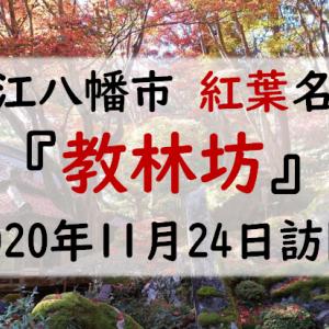 紅葉が見頃になった教林坊を訪問(2020年11月24日)
