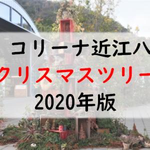 『ラ コリーナ近江八幡』2020年12月:独特なクリスマスツリー