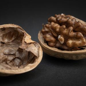 胡桃(くるみ)Walnutsの撮影写真