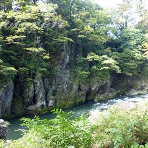 高津戸峡遊歩道(渡良瀬川)ハイキング&小平鍾乳洞