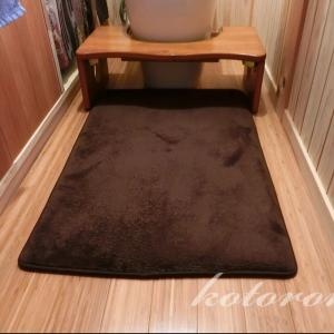 [Web内覧会47][トイレ8]床掃除を楽にするために&フェルトケーキ