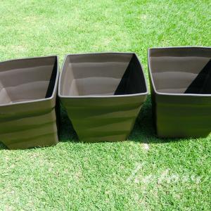 スクエア型の植木鉢を追加購入