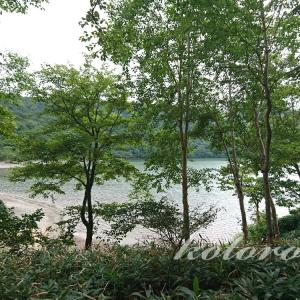 赤城山小沼おとぎの森ハイキング