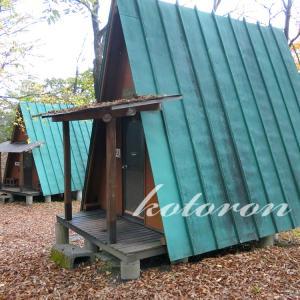 『わらび平森林公園キャンプ場』バンガロー泊