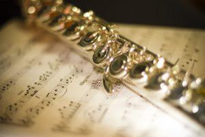 吹奏楽の楽器を紹介をします!独断と偏見で楽器を誉めまくり