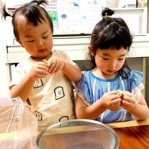 えんどう豆ご飯の作り方〜旬の物で学びたくさん〜