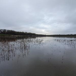 百年に一度の大干ばつを救った恵の雨!ついに湖に水が溜まり始めたので、これまでの苦労を一気に語っちゃいます!