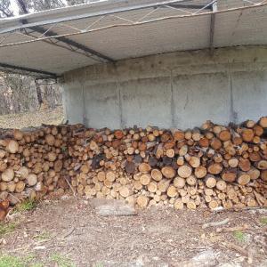 我が家の薪を割らないサステイナブルな薪作りの様子
