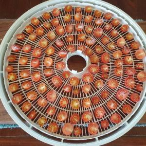 【自給自足】【レシピ】食品乾燥機を使ってドライトマトを2種類作ってみた!~チップスとオイル漬け~