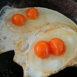 卵を割ったらびっくり!